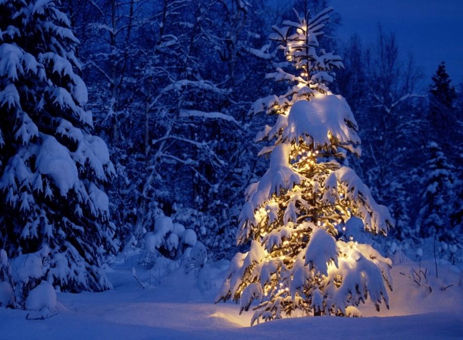 Árbol de Navidad - Villalba Interiorismo
