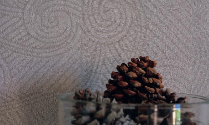 Papel pintado con textura de piel - Villalba Interiorismo (3)